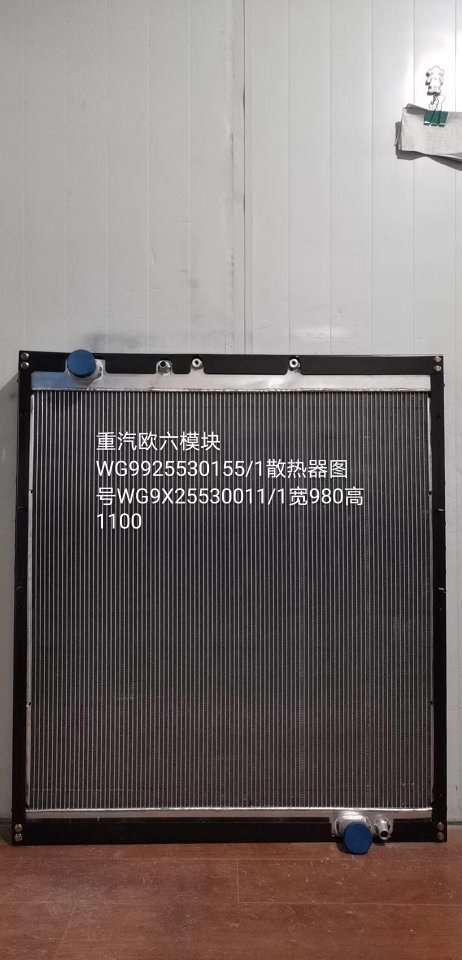 重汽国六WG9925530155