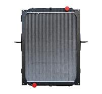 1301010-TD300散热器